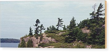 Wood Print featuring the photograph Small Island by Lyle Crump