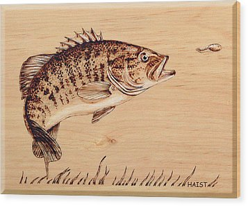 Small Mouth Bass Wood Print by Ron Haist