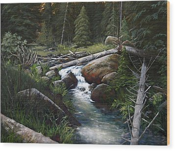 Small Stream In The Lost Wilderness 070810-1612 Wood Print by Kenneth Shanika