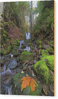 Small Waterfall At Lower Lewis River Falls Wood Print by David Gn