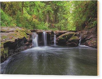 Small Waterfall At Rock Creek Wood Print by David Gn