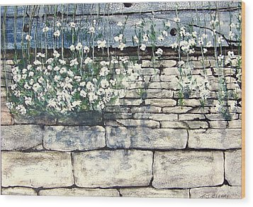 Small White Flowers Wood Print by Terence John Cleary