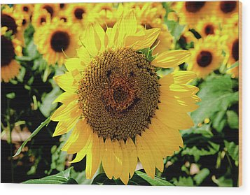 Smile Wood Print by Greg Fortier