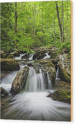 Smith Creek, Springtime Wood Print