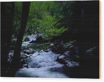 Smokey Mountain Creek Wood Print by Martin Morehead
