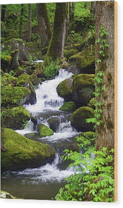 Smokey Mountain Stream Wood Print by Marty Koch