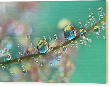 Smokey Rainbow Drops Wood Print by Sharon Johnstone