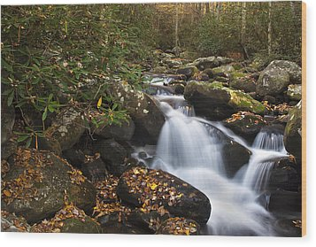 Smokies Stream In Autumn Wood Print by Andrew Soundarajan
