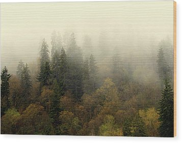 Smoky Mount Horizontal Wood Print by Marty Koch