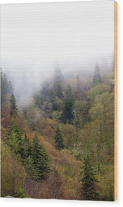 Smoky Mount Vertical Wood Print by Marty Koch