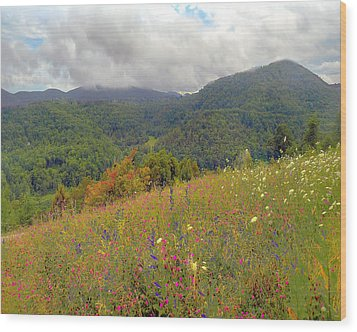 Wood Print featuring the photograph Smoky Mountains by Raymond Earley