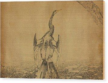 Snake Bird Or Darter  Wood Print