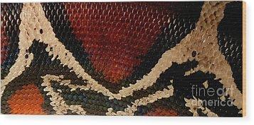 Snake's Scales Wood Print