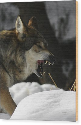Snarling Wolf Wood Print