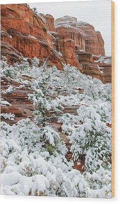 Snow 06-051 Wood Print by Scott McAllister