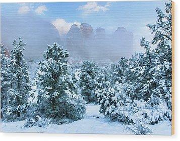Snow 07-072 Wood Print by Scott McAllister