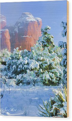 Snow 07-093 Wood Print by Scott McAllister