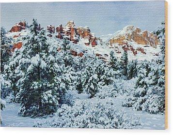 Snow 09-007 Wood Print by Scott McAllister