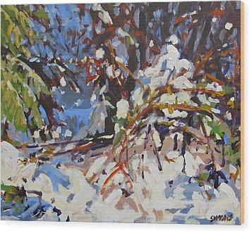 Snow Bound Wood Print by Brian Simons