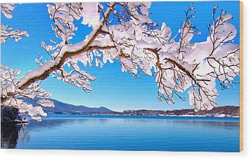 Snow Branch Smith Mountain Lake Wood Print by The American Shutterbug Society