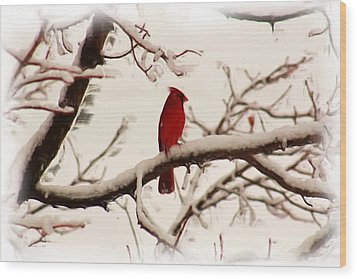 Snow Cardinal Wood Print by Janet Pugh