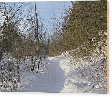 Snow Covered Pathway Wood Print by Richard Mitchell