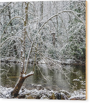 Wood Print featuring the photograph Snow Cranberry River by Thomas R Fletcher
