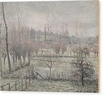 Snow Effect At Eragny Wood Print by Camille Pissarro