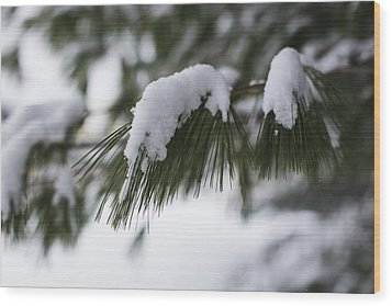 Wood Print featuring the photograph Snow Falling On The White Pines by Andrew Pacheco
