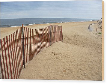 Snow Fence - Plum Island Wood Print by AnnaJanessa PhotoArt