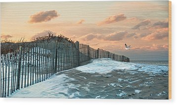 Wood Print featuring the photograph Snow Fence by Robin-Lee Vieira