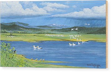 Snow Geese  Tidal Flats Wood Print by Bob Patterson