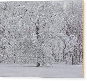 Snow Globe Wood Print