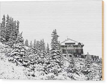 Wood Print featuring the photograph Snow In July 2 by Teresa Zieba