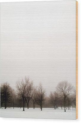Snow Landscape Wood Print by Emilio Lovisa