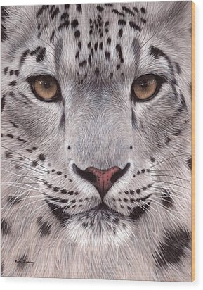Snow Leopard Face Wood Print by Rachel Stribbling