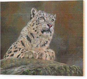 Snow Leopard On Rock Wood Print by David Stribbling