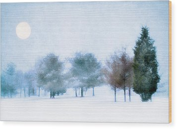 Snow Moon Wood Print by Darren Fisher