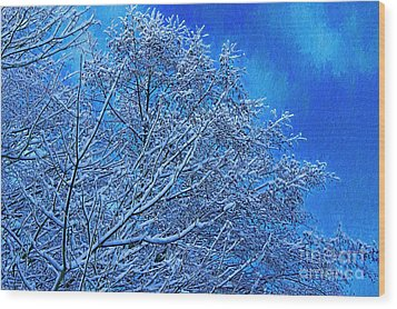 Wood Print featuring the photograph Snow On Branches Photo Art by Sharon Talson