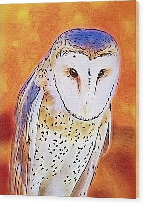 Wood Print featuring the digital art White Face Barn Owl by Tracie Kaska