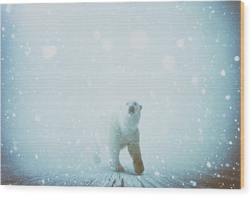 Snow Patrol Wood Print