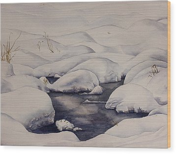 Snow Pool Wood Print by Debbie Homewood