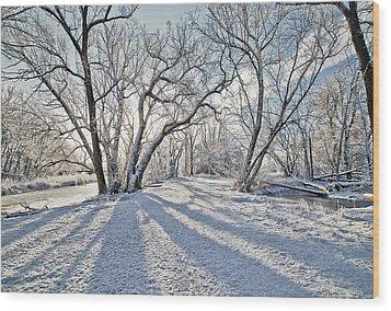 Snow Shadows Wood Print by James Steele