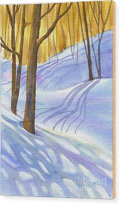 Snow-shadows Wood Print by Nancy Newman