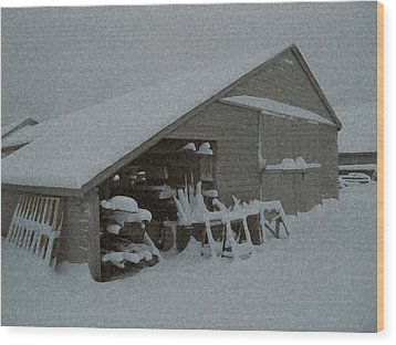 Snow Shed Wood Print by Paul Barlo