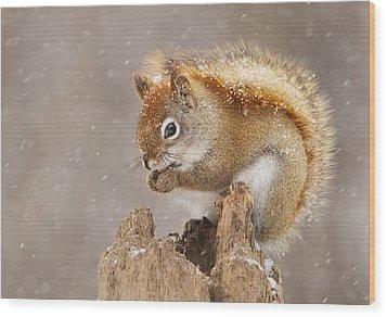 Snow Storm Wood Print by Mircea Costina