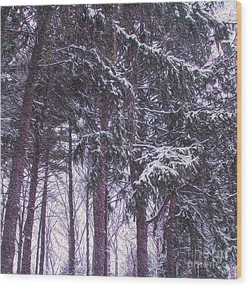 Snow Storm On Pines Wood Print by Sandy Moulder