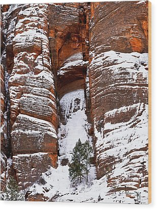 Snow Stripes Wood Print by Christopher Holmes