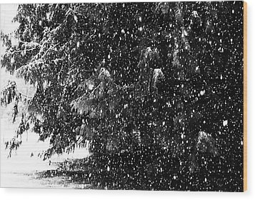Wood Print featuring the photograph Snow by Yulia Kazansky