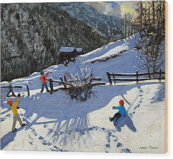 Snowballers Wood Print by Andrew Macara